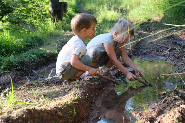 Yep, they are picking at a muddy puddle full with baby frogs. Photo by: Exploring Slovenia.