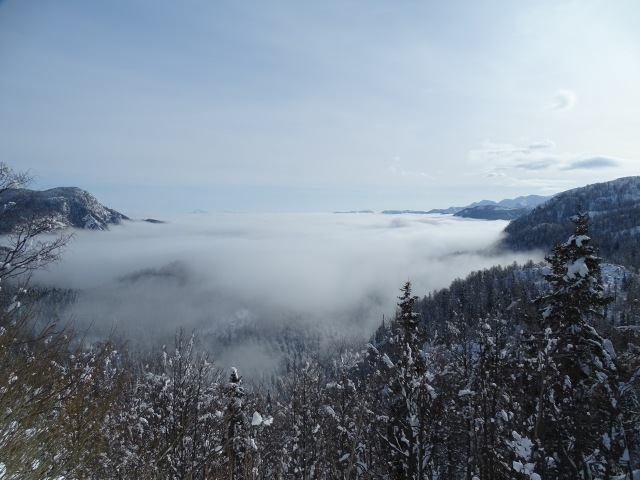 In case you were wondering, that's Lake Bohinj you can (not) see under the thick fog.