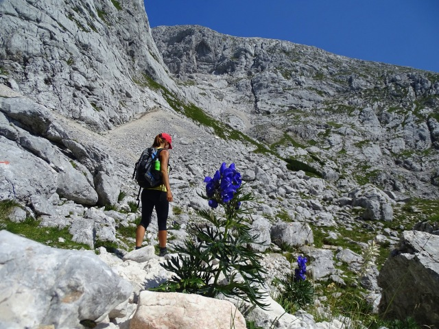 Hiking towards Grintovec, Slovenia
