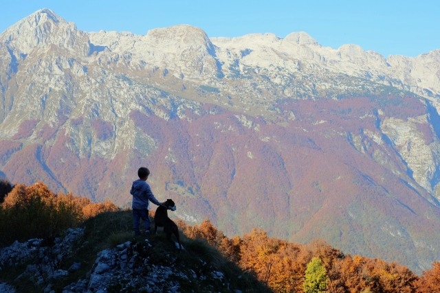A boy and a dog in the mountains, Slovenia