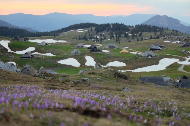 Velika Planina for sunrise