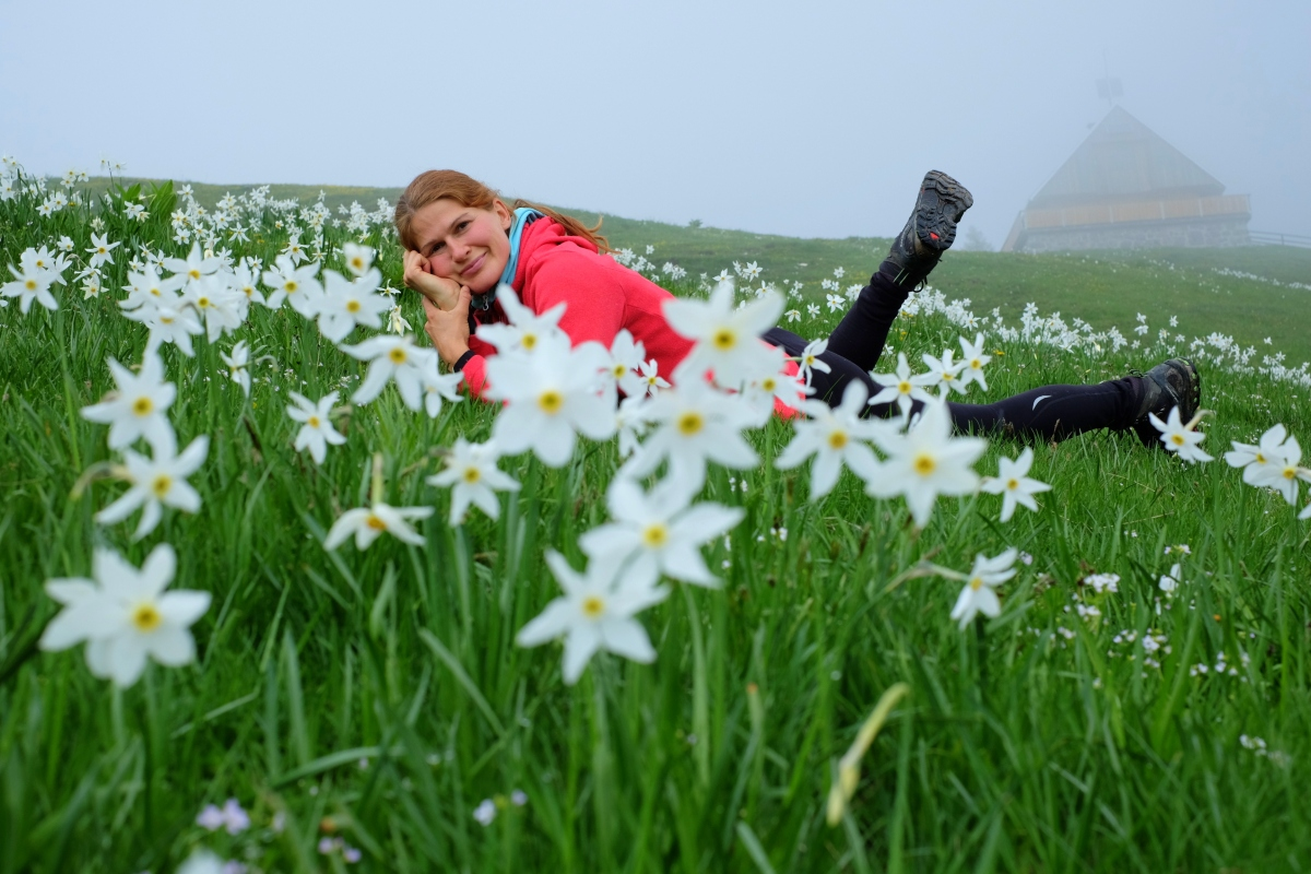 Chasing spring flowers in the Slovenian Alps: Dovška Baba