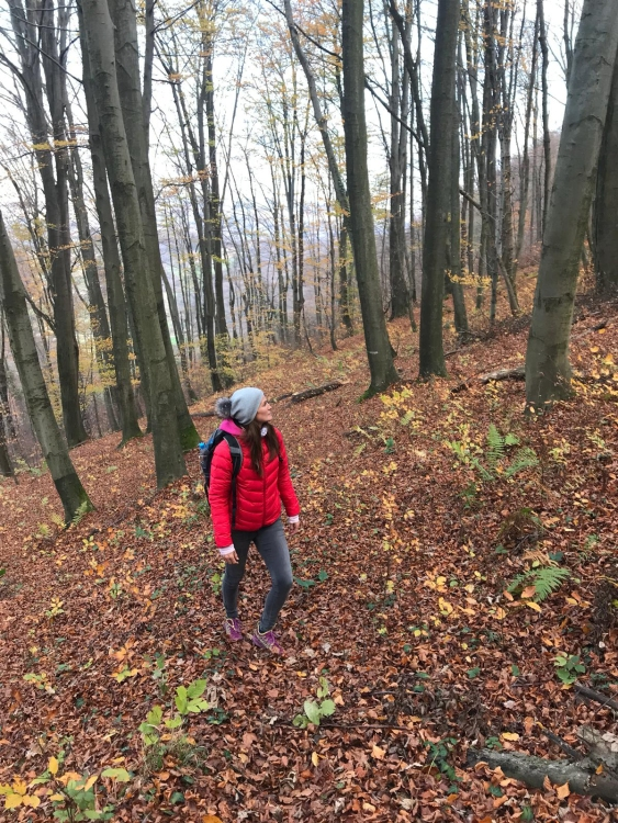 Hiking the Sremič Hill, hiking in Krško, Slovenia