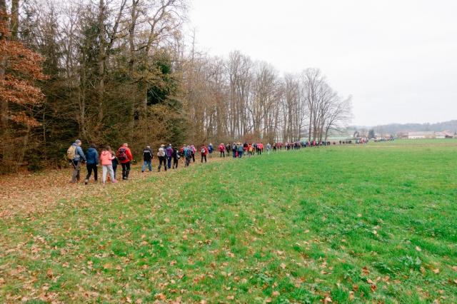 Č'bular Walk, Autumn Posavje Hiking Festival