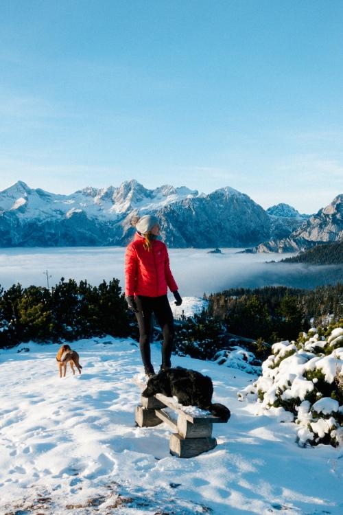 Hiking with dogs on Velika Planina, Visit Ljubljana, Slovenia