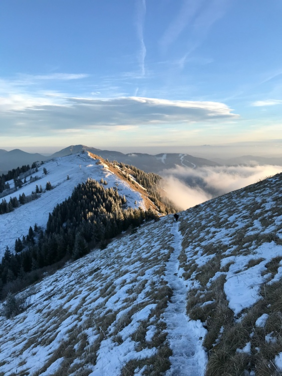 Ridge trail in Soriška Planina, Julian Alps